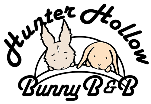 Hunter Hollow Bunny B and B